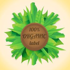Free Organic Leaves Label Royalty Free Stock Photography - 30721677