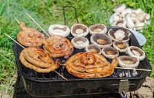 Free Food Cooking On Barbecue Royalty Free Stock Photos - 30733088