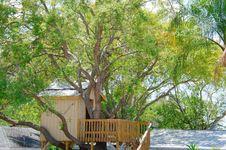 Free Tree House Royalty Free Stock Photography - 30736757