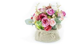 Free Plastic Flower Stock Images - 30738714