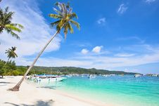 Free Tropical Islands Royalty Free Stock Photo - 30738725