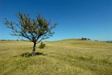 Free Landscape Royalty Free Stock Photo - 30746615