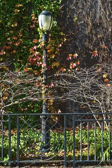 Free Fall City Lamp Post Stock Photo - 30747850