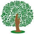 Free Green Tree Royalty Free Stock Photo - 30750645