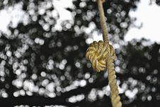 Free Knot Bokeh Stock Images - 30750864