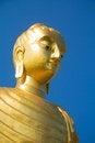 Free Gold Buddha Royalty Free Stock Photo - 30770895