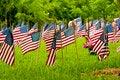 Free American Flag Royalty Free Stock Photos - 30772988