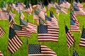 Free American Flag Stock Photo - 30772990