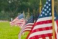 Free American Flag Stock Image - 30772991