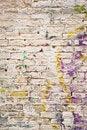 Free Grunge Brick Royalty Free Stock Photo - 30773075