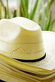 Free Straw Hats Stock Images - 30773084