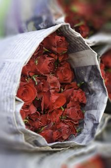 Free Bouquet Of Roses Stock Image - 30775501