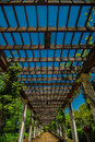 Free Garden Lattice Walkway With Stone Pavers And Vine Flowers Throug Royalty Free Stock Photography - 30788127