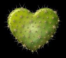Free Cactus Heart Stock Photo - 30784500