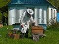 Free Beekeeper Royalty Free Stock Photos - 3083878