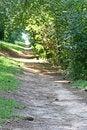 Free Path To Lake Royalty Free Stock Photos - 3085148