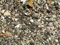 Free Sea Stones Stock Photos - 3085553
