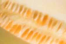 Free Melon Close-up Stock Photos - 3081203