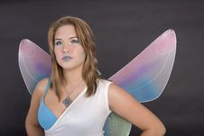 Free Wistful Fairy Stock Photography - 3081932