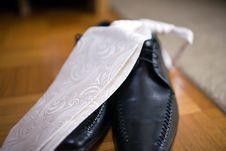 Free Festive Wear Stock Photography - 3084092