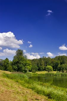 Free Green Pond Under Blue Sky Stock Photo - 3084540