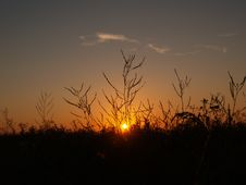Free Sunset Royalty Free Stock Photos - 3085468