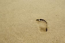 Free Footprint On The Beach Royalty Free Stock Photography - 3086017