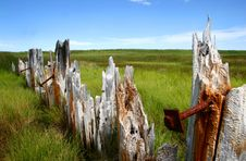 Free Old Rusty Fence In Green Field Stock Images - 3086864