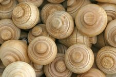 Free Wooden Spin Tops Stock Image - 3088961