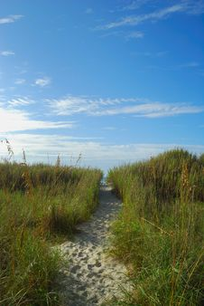 Free Winding Trail Leading To Ocean Stock Photography - 3089542