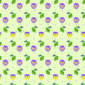 Free Floral  Seamless Pattern With Viola Royalty Free Stock Images - 30800189