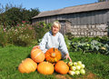 Free Woman With A Crop Of Pumpkins And Squash Stock Photography - 30804572