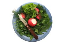 Free Greens And Radishes On A Blue Plate With A Knife Stock Photos - 30805953