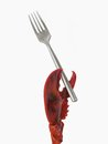 Free Lobster Claw Holding A Fork. Royalty Free Stock Photo - 30819385