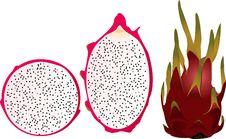 Free Pitaya, Pitahaya, Dragonfriut Royalty Free Stock Image - 30816396