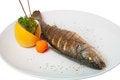 Free Fried Fish Royalty Free Stock Photos - 30829628