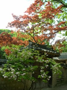 Free A Gate At Changdeok Palace Stock Photos - 30835763