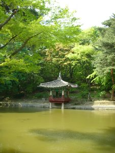 Free The Secret Garden Of Changdeok Palace Stock Photos - 30835773