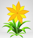 Free Yellow Six Petal Blossom Flower Stock Images - 30843374