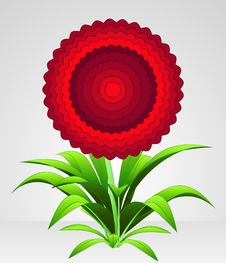 Free Red Rounded Blossom Blooming Flower Royalty Free Stock Photos - 30843318