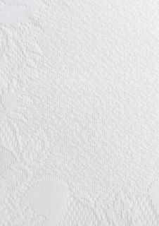 Free White Fabric Texture With Flowers Stock Photos - 30858363
