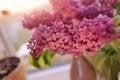 Free Purple Bouquet Stock Photos - 30867763