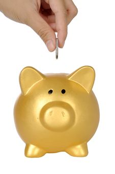 Free Hand Put Coin Into Piggy Bank Stock Photo - 30863930