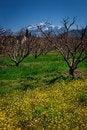 Free Landscape Swat Stock Image - 30876651