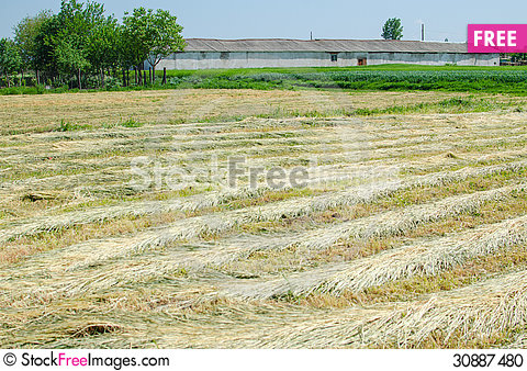 Free Agricultural Field With Old Farm House Stock Photo - 30887480