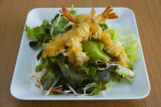 Free Tempura Salad Royalty Free Stock Photos - 30888308