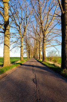 Free Empty Country Road Stock Photos - 30889603
