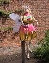 Free Fairy Scarecrow. Royalty Free Stock Image - 30898836