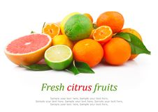 Free Citrus Fruits Royalty Free Stock Images - 30891409