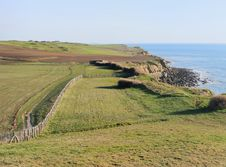 Free Fields On The Cliff Stock Image - 30894151